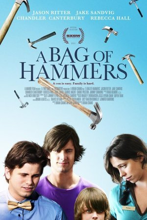 Bag of Hammers