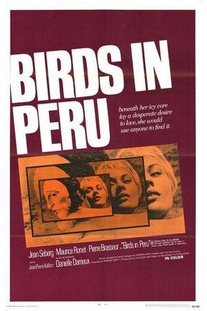 Birds in Peru