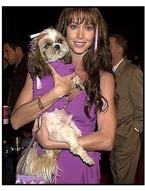 Shannon Elizabeth at the Tomcats premiere