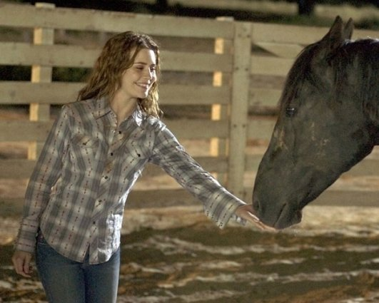 Alison Lohman in 'Flicka'